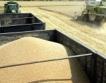 Пшеницата поевтинява
