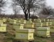 Пчелари от Търговище даряват на пчели на общината