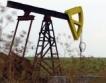 Враца:Проучване на стари залежи от нефт, газ