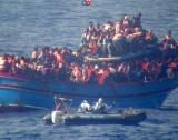 Мигранти & политика
