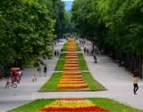 Фирми: Старбъкс във Варна
