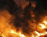 Смъртоносните пожари около Атина