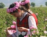 """Туристически район """"Долина на розите"""""""