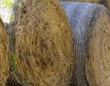 Земеделци не плащат данъци върху субсидии