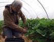 Европейска подкрепа за фермери