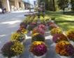 Хоби и здраве на Пловдивския панаир