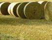 1% биодобавка към дизела