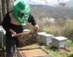 50% от пчелния мед - непродаден?