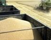 По-малък износ на пшеница & брашно