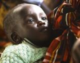 113 милиона души гладуват