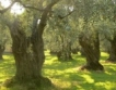 Гърция ще цифровизира земеделието си