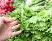 Защо зеленчуците трябва да се мият?