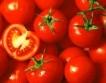 Вносните домати поевтиняха