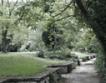 До 4 години сметището в Суходол става парк