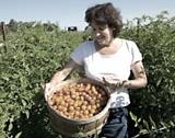 САЩ:42 години средна възраст във фермерите