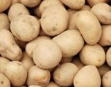 Косово забрани внос на македонски картофи