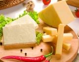 300 производители на изложението Cheese 2019