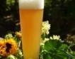 Ксантохумол в бирата? Какво е това?