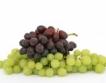 Плевен: сортове грозде, Шабла - най-едрите плодове