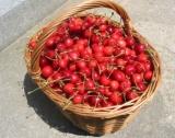 Турция изнесе череши за $180 млн.