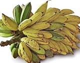 Известен сорт банани изчезва...