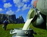 Изкупуването на мляко с договори онлайн