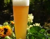 Как бирата се отразява на здравето ни?