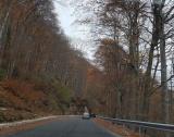 51 млн. лв. за малки пътища