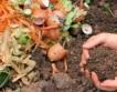 Харманли строи инсталация за разделно компостиране