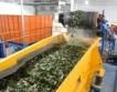 Колко печелят в Русия от преработката на боклук?