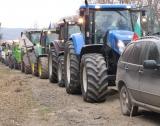 Младите фермери в ЕС са 6%