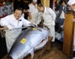 Риба тон за $1,8 млн.