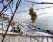 Гърция ограничи трафика към България