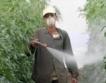 Германия: €155 млн. глоба заради пестициди