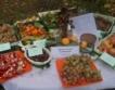 Ще победят ли българските плодове и зеленчуци ?