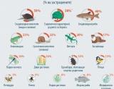 Застрашените видове в ЕВропа - инфографика