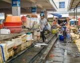 Китай да спре яденето на твари