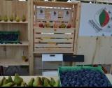 197 малки фермери искат финансиране от ПРСР