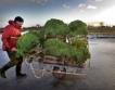 ЕК: По-лесно движение на сезонните работници