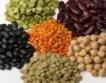 Ставки за протеинови култури + рози