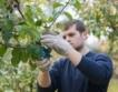 Лидл и ЕБВР обучават земеделски производители