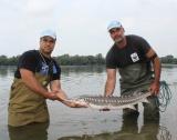 Ръст в улова на риба от Черно море