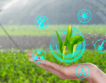 20,6 млн. лева за иновативно земеделие