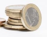 Германия намали депутатските заплати с ....60 евро