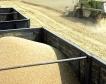 Русия: Рекорден земеделски износ