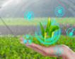 Нова мярка за роботизация в земеделието