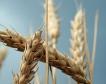 5 млн. лв.предвидени за земеделски застраховки