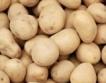 Фирми изкупуват картофи и ги даряват