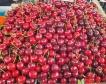 Кюстендилски череши на софийските пазари