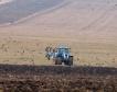 Зърнените площи са 60% от обработваемата земя